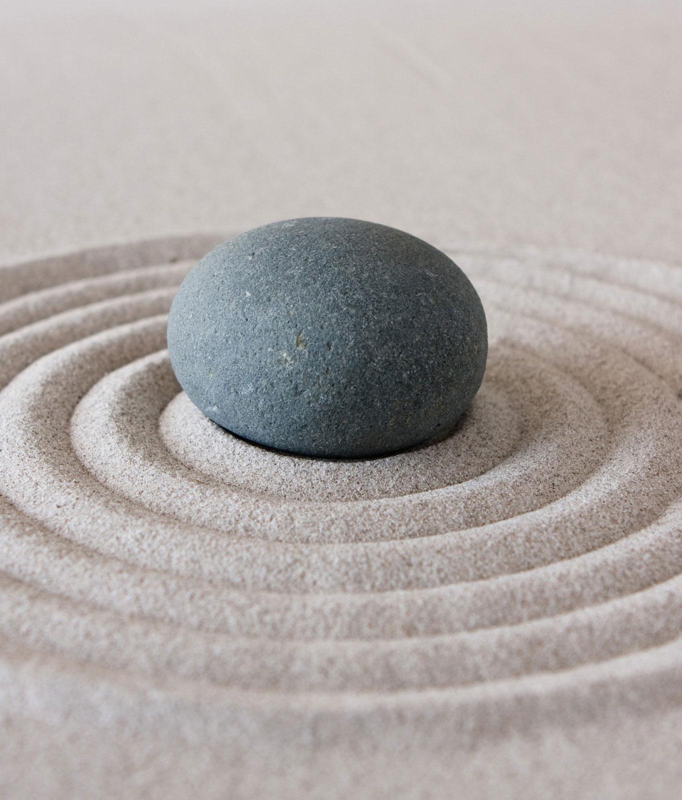 zen-vision
